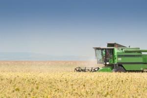 O resultado da agricultura de precisão, geralmente é o aumento de produtividade - Créditos Shutterstock