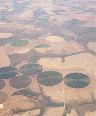 Cultivo agrícola no Cerrado com manejo de calagem, adubação e irrigação.