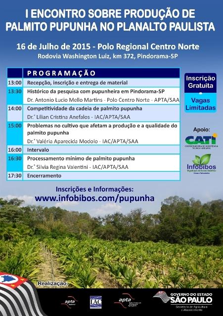 Flyer A5 Pupunha_site