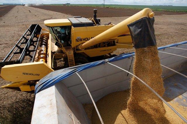 Os prós-de-termos-estrangeiros-investindo-na-agricultura-brasileira-é-contar-com-profissionais competentes produzindo no Brasil-Crédito Sape