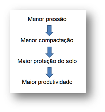 Nova Imagem (6)